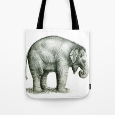 Baby Elephant (2) g008 Tote Bag