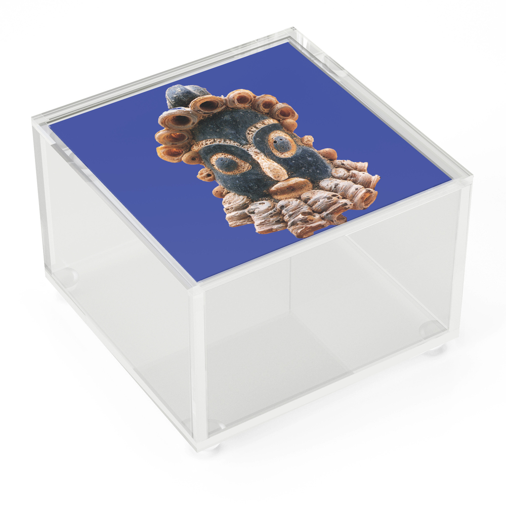 Phoenician_Hipsters_Acrylic_Box_by_eurozoom