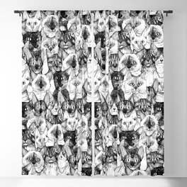 just cats Blackout Curtain