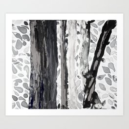Rainbow Eucalyptus Graffiti artist tree from shedding bark South Pacific Black and White Night Art Print