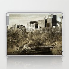 Vintage City Park Laptop & iPad Skin