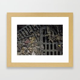 Fall Details Framed Art Print