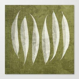White Willow Canvas Print