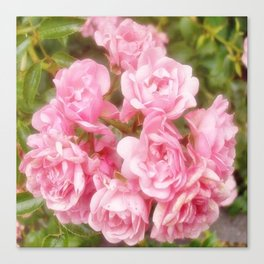 RomanticRose Canvas Print