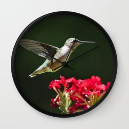 Hovering Hummingbird Wall Clock