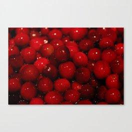 Cranberries Photography Print Canvas Print
