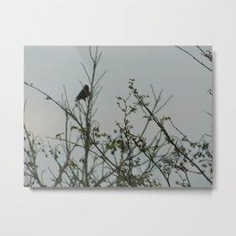 Bird in the Brush Metal Print
