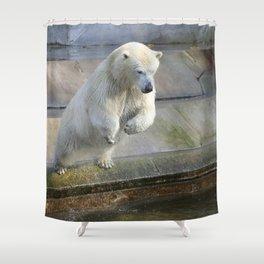 Polar_Bear_2015_0301 Shower Curtain