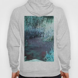 Forest Pond Hoody