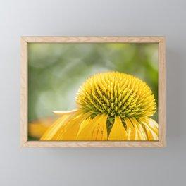 Leuchten im Sommer Framed Mini Art Print