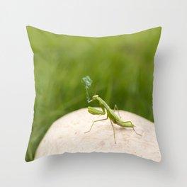 Smoking Praying Mantis Throw Pillow