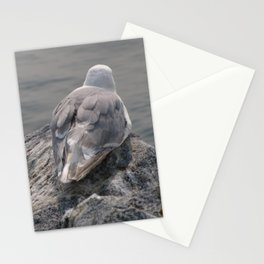 Gull at Whiterock Beach Stationery Cards