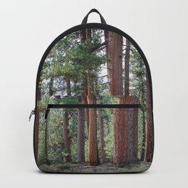 Ponderosa Pine Forest Backpack