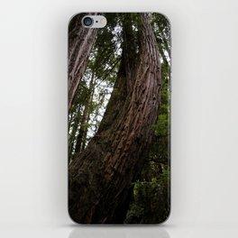 Woods iPhone Skin
