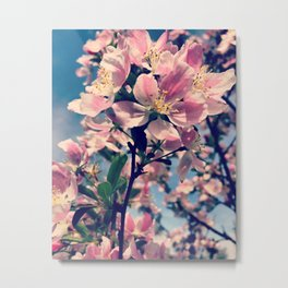 in bloom. Metal Print