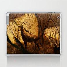 Diorama :: Antelope Laptop & iPad Skin