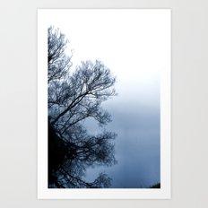 Swans in the Mist Art Print