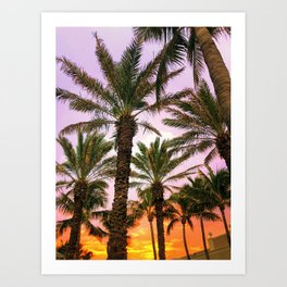 Florida nights Art Print