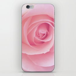 Flower | Pink Rose |  Photography | Nature | Spring | Summer iPhone Skin