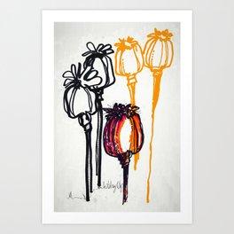 Poppy Study Art Print