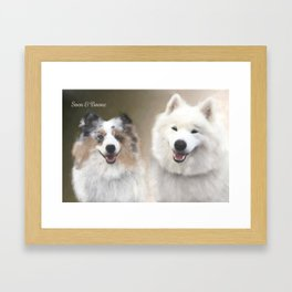 Sven & Buddies; Sheltie & Samoyed Portrait Framed Art Print