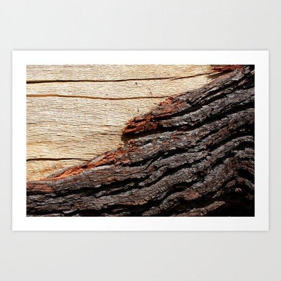 Wood Duo Art Print