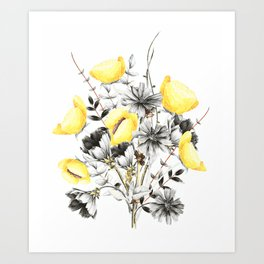 Poppies And Chicory Wildflower Bouquet Art Print