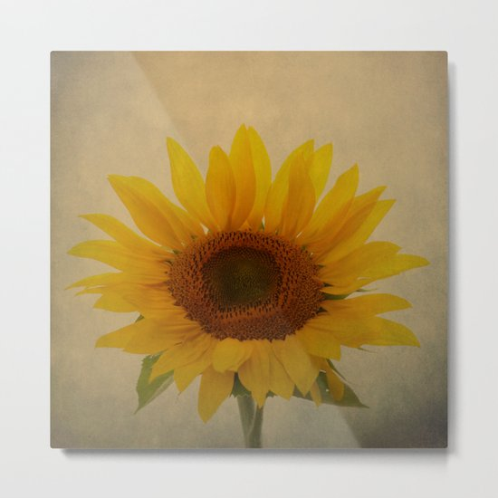 Sun Giant Metal Print