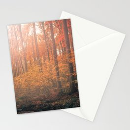 Rainbow Forest Stationery Cards