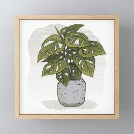 Swiss Cheese Plant Framed Mini Art Print
