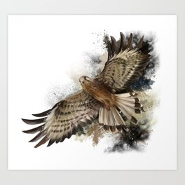 Falcon Flight Art Print
