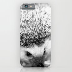 hedgehog Slim Case iPhone 6