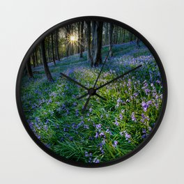 Bluebell sunset at Margam woods Wall Clock