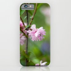 Flowering Almond Blossoms II iPhone 6s Slim Case