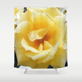 Afternoon, Rose Shower Curtain