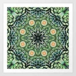 Succulent Splendor Two Art Print