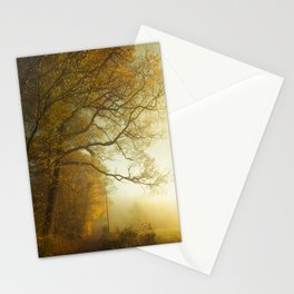 Overwhelm - Fall Feelings Stationery Cards