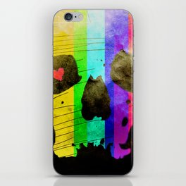 Vintage Colourful Skull iPhone Skin