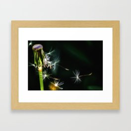 Gone with the breeze Framed Art Print