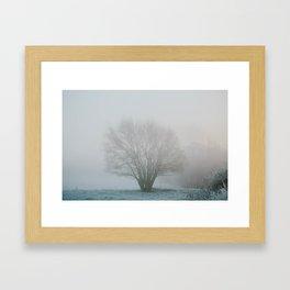 Tree in Winter Morning Mist Framed Art Print