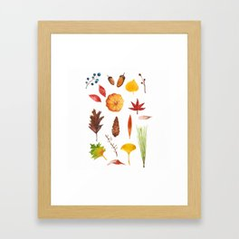 Fall collection Framed Art Print