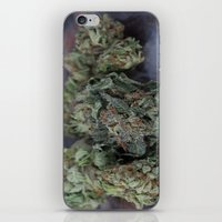 medical iPhone & iPod Skins featuring Master Kush Medical Marijuana by BudProducts.us