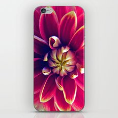 Peng iPhone & iPod Skin