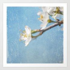 White and Blue Spring no. I Art Print