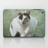 aurora iPad Cases featuring aurora by lucyliu