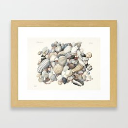 Sea shore of Crete Framed Art Print