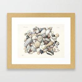 Sea shore of Crete Framed Art Print