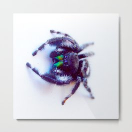 Little Friend Metal Print