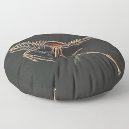 Citipati Osmolskae Skeletal Study (No Labels) Floor Pillow