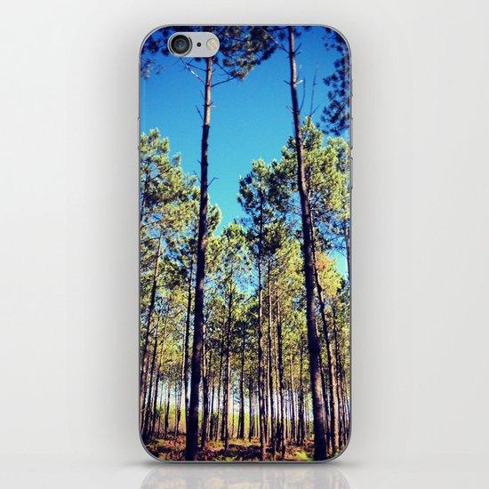 Tree Line iPhone & iPod Skin